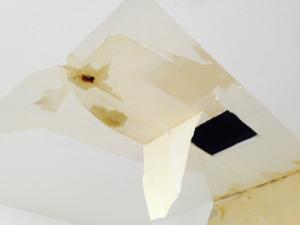 空き家の雨漏り対策を怠ることで起きる重大な問題とは