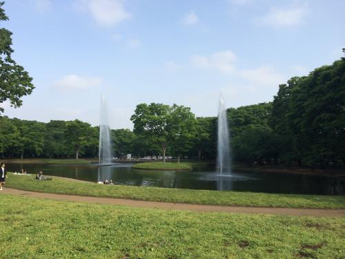 ★代々木さんぽ★ ~代々木公園→代々木八幡宮~の画像
