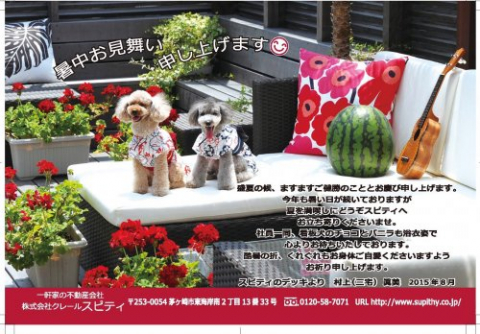 ワンコ大好きなお客様!スピティは大歓迎です‼️ 大切な家族愛犬と一緒に家探ししませんか?の画像