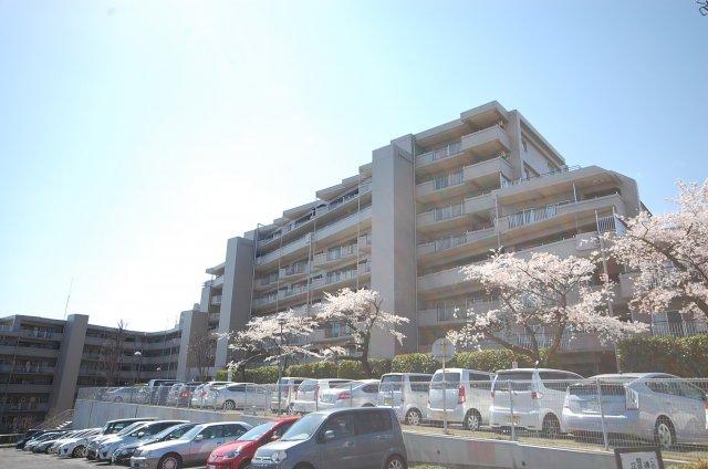 エステ・スクエア武蔵藤沢 6階